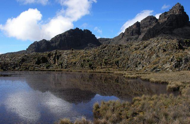 Mount Kenya National Park (Image: joxeankoret)