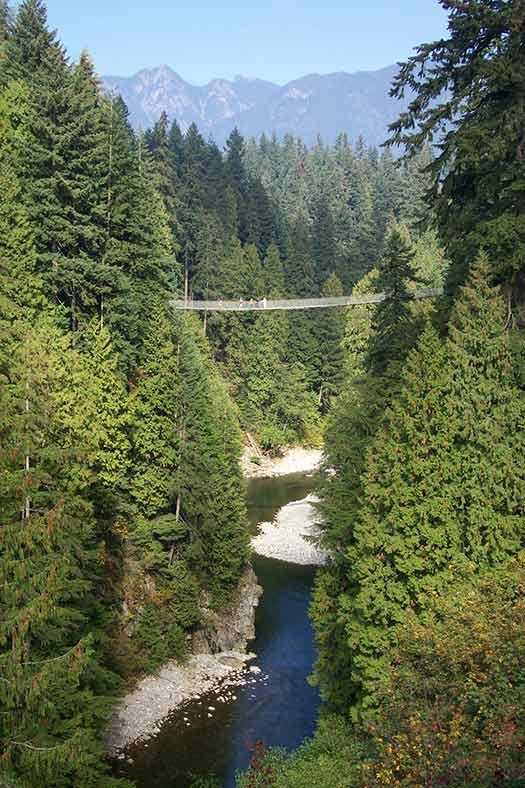 Capilano Suspension Bridge Park (Image: Capilano Suspension Bridge Park)