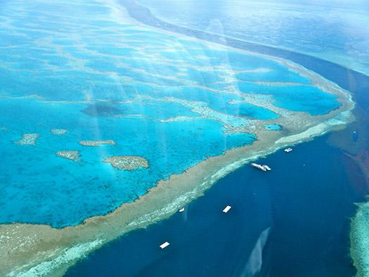 Great Barrier Reef, Australia (Image: Sarah Ackerman)