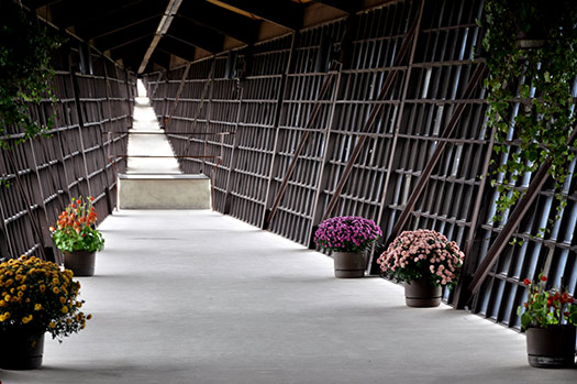 Infinity Room (Image: Alexis Fam Photography)