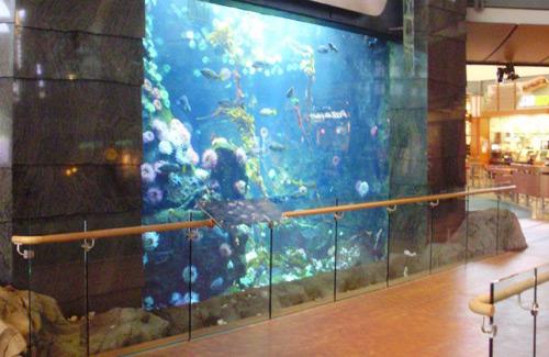 An aquarium at the Vancouver International Airport. (Image: sporst)