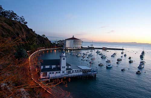 Catalina, California (Image: JMR_Photography)