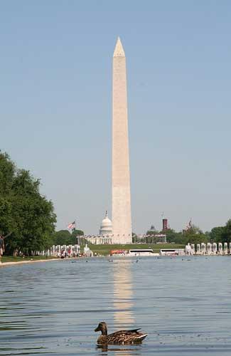 Washington Monument in Washington D.C. (Image: MCS@flickr)