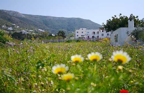 Paros (Image: ethanlindsey)