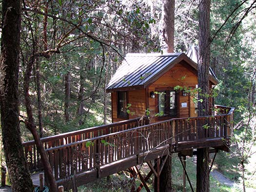 Calypso at Vertical Horizons Treehouse Paradise
