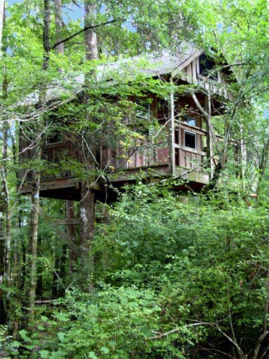 Small Treehouse at Carolina Heritage Outfitters
