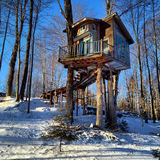 Tiny Fern Forest Treehouse (Image: Sebastien BARRE)