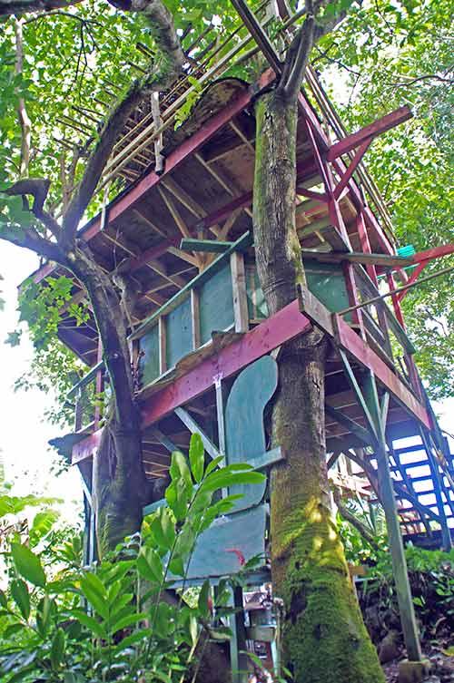 Treetops Treehouse at Hana Lani Treehouses