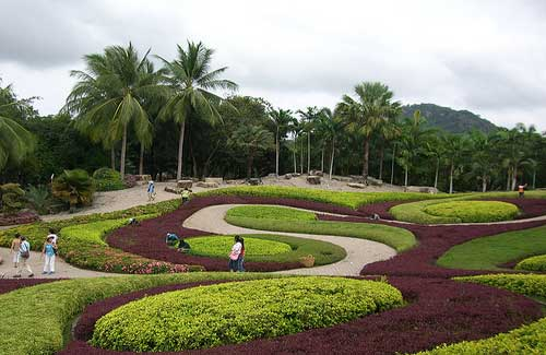 Nong Nooch (Image: zhaffsky used under a Creative Commons Attribution-ShareAlike license)