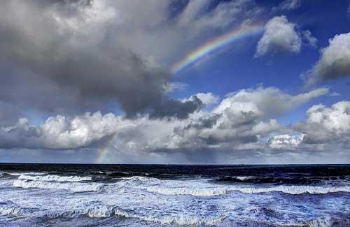 Bronte Beach, Sydney (Image: Rmonty119)