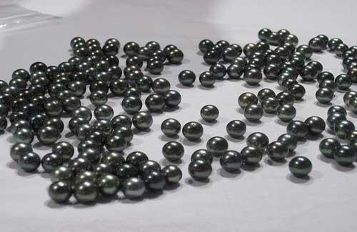 Tahitian black pearls (Image: Liz Saldaña)