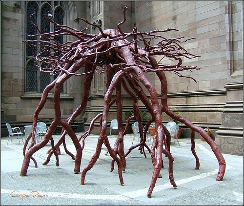 """""""Trinity Root,"""" New York, N.Y., United States (Image: tonythemisfit)"""