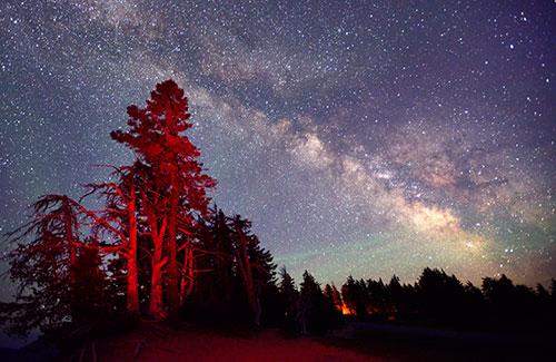 Nightfall near the Lodge at Crater Lake National Park, Oregon (Image: Christian Heeb/Travel Oregon)