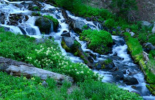 Sand Creek at Crater Lake National Park, Oregon (Image: Christian Heeb/Travel Oregon)