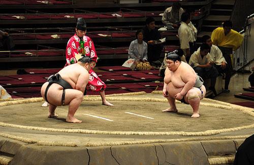 A sumo match (Image: A Little Lam)