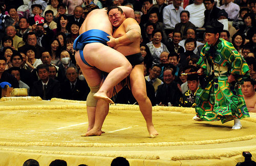 A sumo match (Image: m-louis used under a Creative Commons Attribution-ShareAlike license)