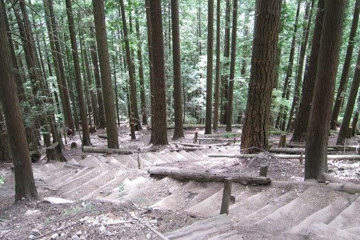 Grouse Grind © Peter McCurdy/flickr (https://www.flickr.com/photos/cpirate/3175352413/in/photostream/)
