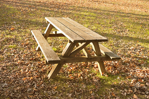 Picnic Bench © Stacey Newman/iStock/Thinkstock (http://www.thinkstockphotos.co.uk/image/stock-photo-autumn-picnic-table-and-leaves/165508214)