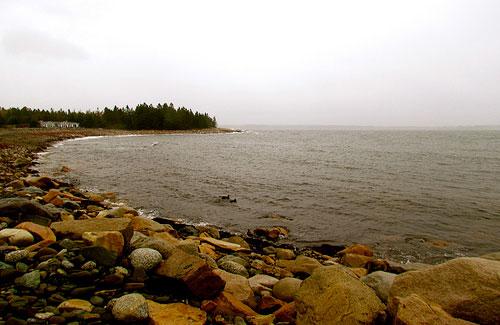 Seawall along Acadia National Park (Image: jeffgunn)