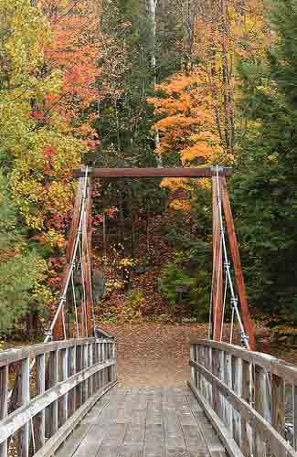 Lincoln Woods Trail (Image: Bob Linsdell)