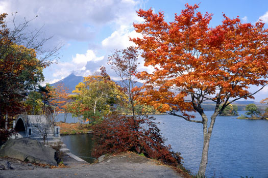 Free Campsites Around the World: Lake Onuma. Photo by Visit Hokkaido