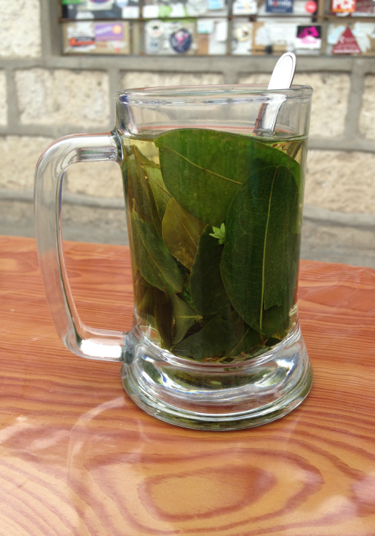 Tea made with a mix of herbs native to Peru, including coca leaves which are reportedly good for alleviating altitude sickness (Image: Melisse Hinkle)