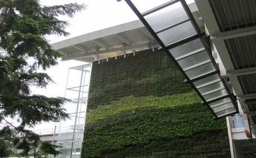 Ways airports are going green