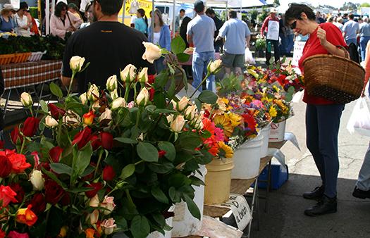 Hillcrest Farmers Market Roses