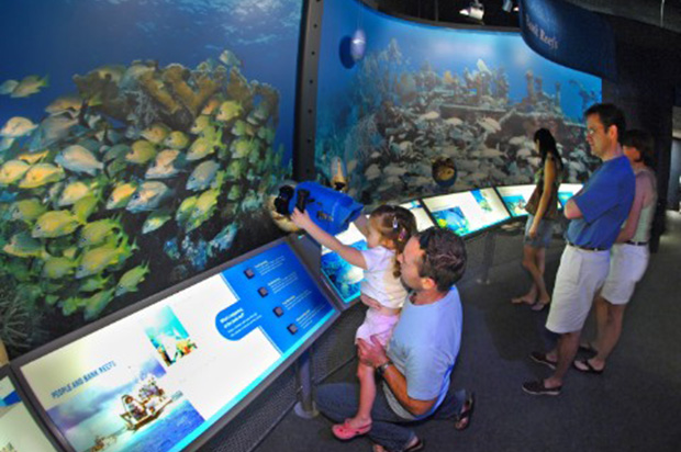 Family at the National Marine Sanctuary at the Florida Keys Eco-Discovery Center