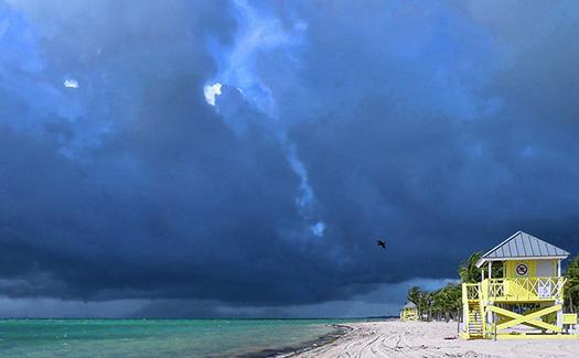 Crandon Park Beach, Key Biscayne, Florida