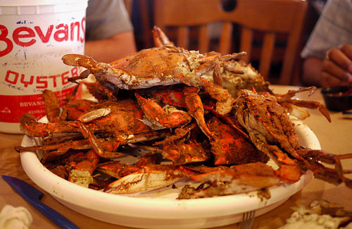 A plate of Maryland's blue crabs (Image: vishpool)
