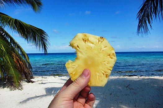 Street food can be healthy too. Laughing Bird Caye National Park. Photo by Nick M