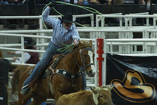 Rodeo - Father's Day gift ideas
