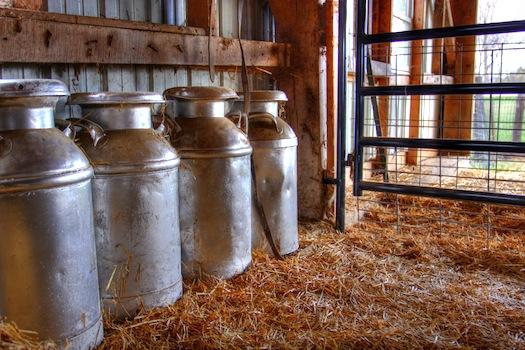 Milk Jugs © Kyle Hickman