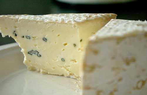 Cheese (Image: cookbookman17)