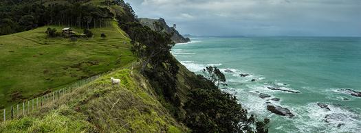 The Goat Coast, Leigh, Auckland. Photo: Alex Schwab