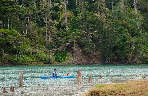 North Coast near Mendocino (Image: California Travel and Tourism Commission/ Andreas Hub)