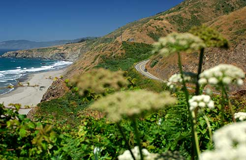 Pacific Coast Highway near Fort Bragg (Image: California Travel and Tourism Commission/ Christian Heeb)