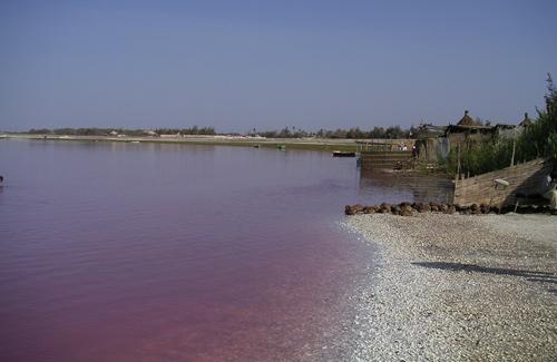 color-lac-rose
