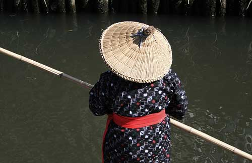 The Asian conical hat (Image: d'n'c used under a Creative Commons Attribution-ShareAlike license)