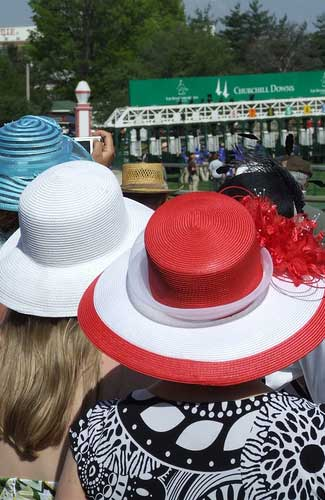 The American derby hat (Image: L.Burchfield)