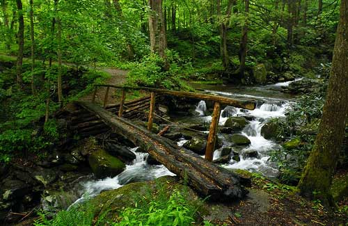 Smoky Mountains (Image: Retromoderns used under a Creative Commons Attribution-ShareAlike license)