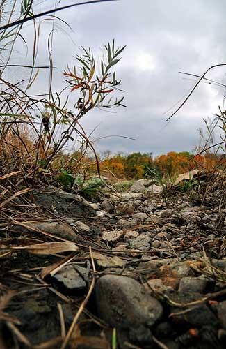 Connecticut's landscape (Image: Mike Poresky)