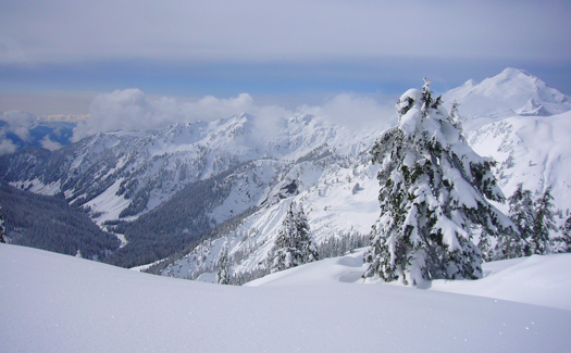 Mt. Baker, Washington (Image: bravenboer)