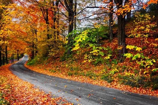 new england road-new england fall scenery