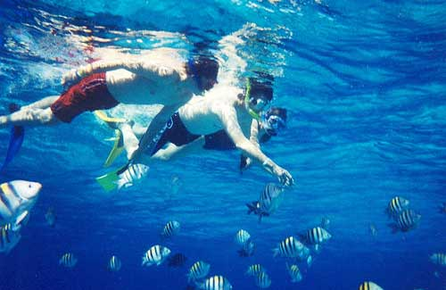 Snorkeling in Cozumel (Image: CaptPiper used under a Creative Commons Attribution-ShareAlike license)