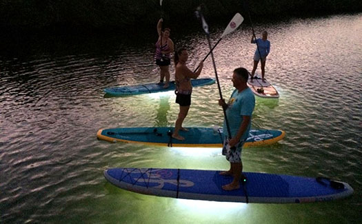 Light Up the Night Paddle Tours