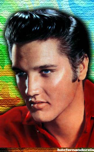 Elvis (Image: 7477245@N05)
