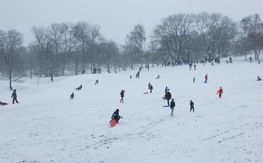 People sledding in Greenwich Park (Image: eepaul)