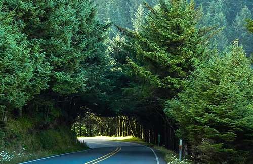 Oregon Coast (Image: Alaskan Dude)